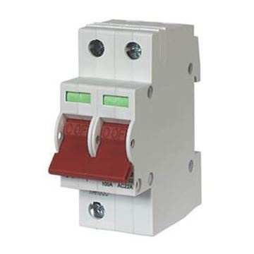 Picture of Crab 100SW2 Switch Discon DP 100A